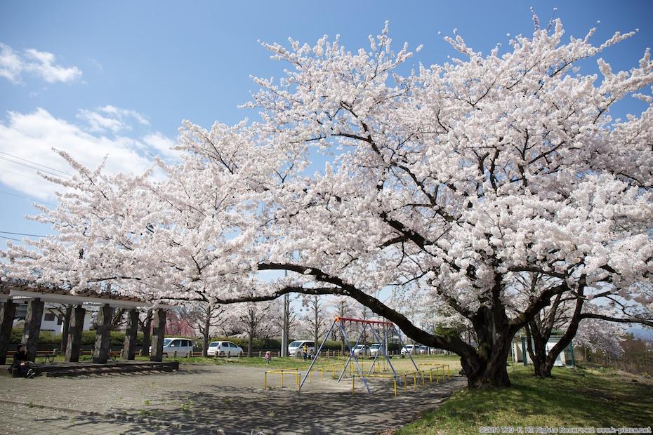 2014-04-19_12-37-59