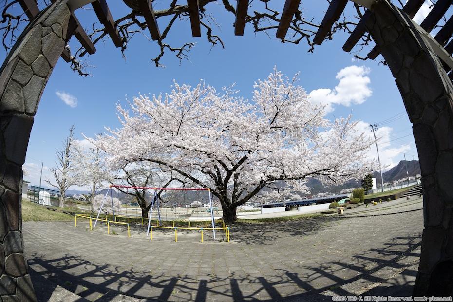2014-04-19_13-04-30