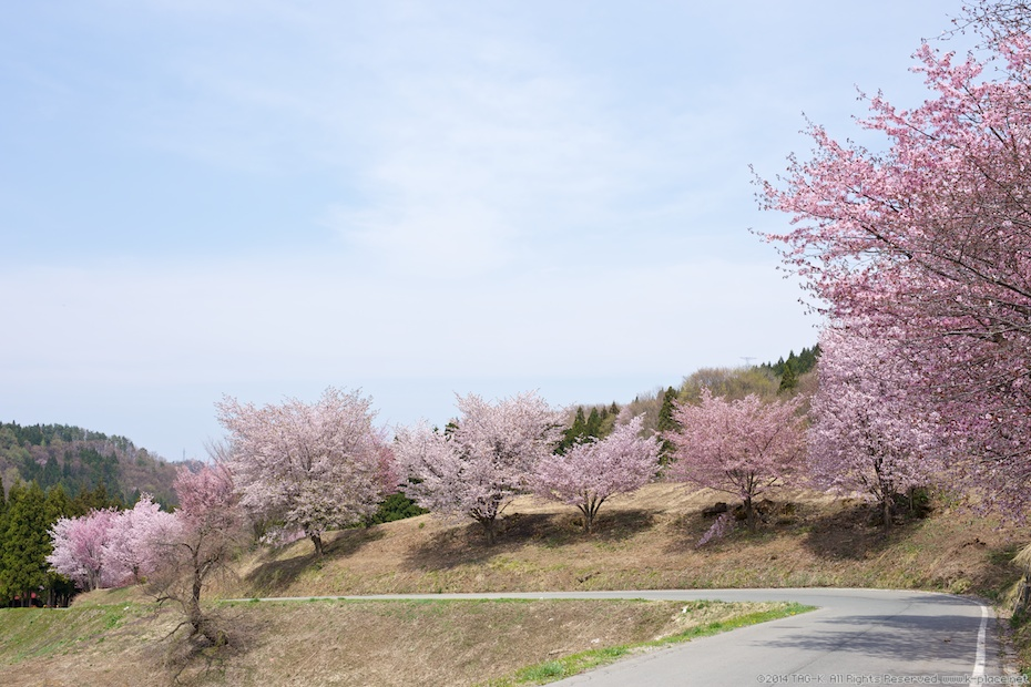 2014-04-29_13-01-51
