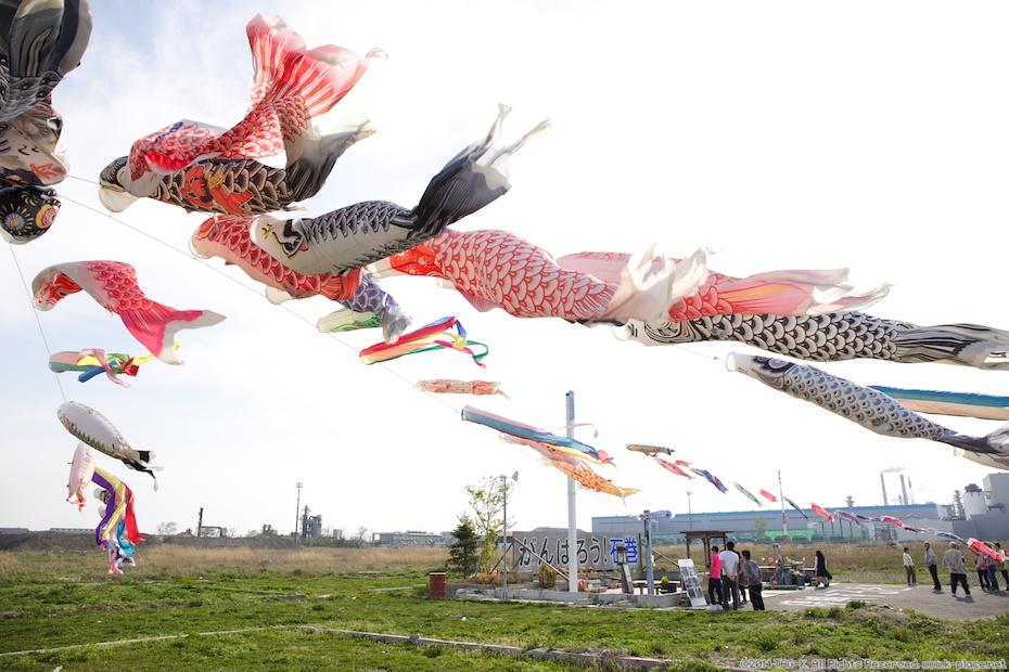 がんばろう!石巻 鯉のぼり 2014