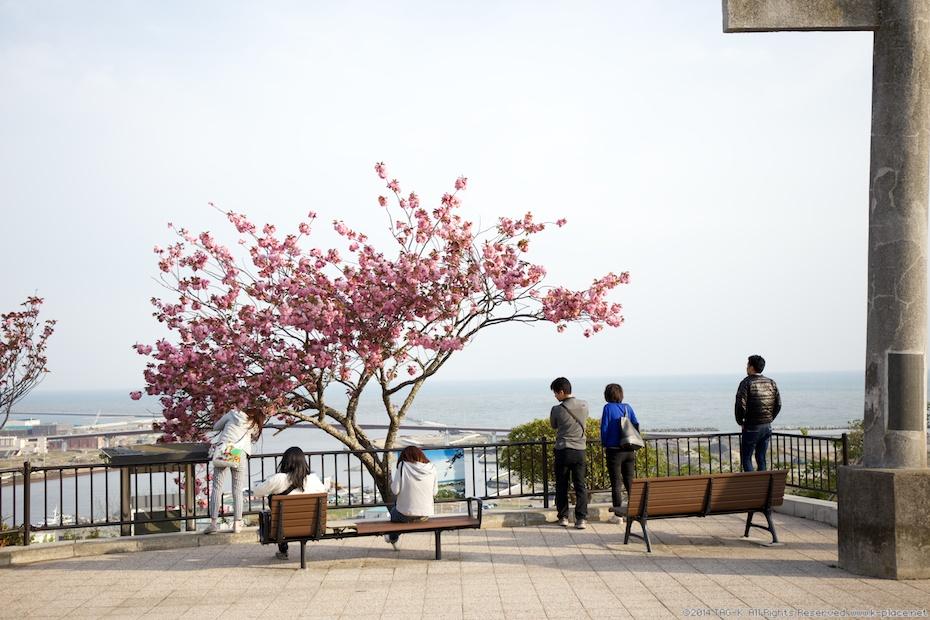 石巻、日和山公園 2014